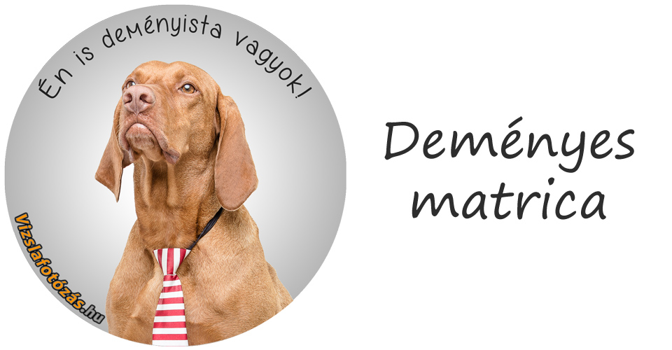 Demeny_matrica_v3