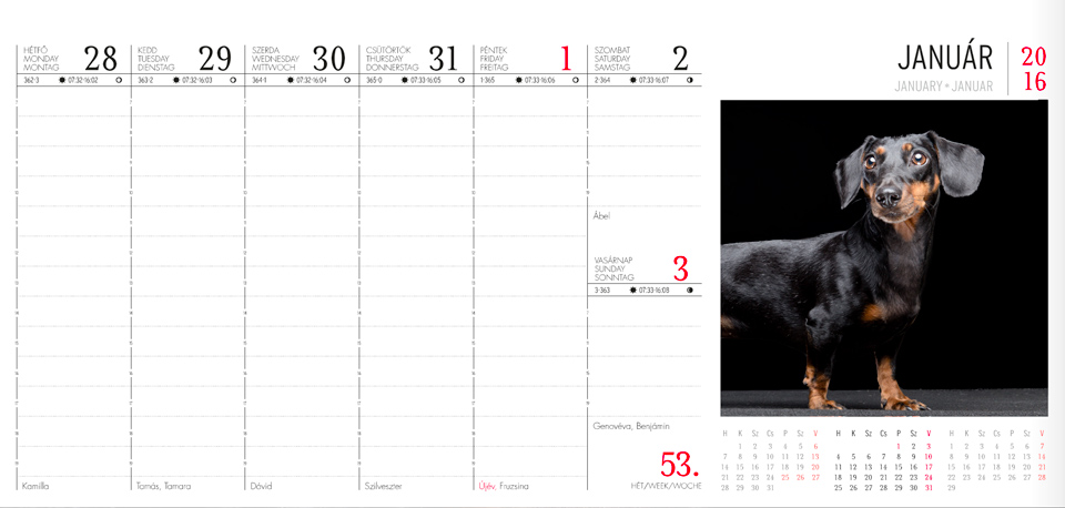 Tacsis naptár