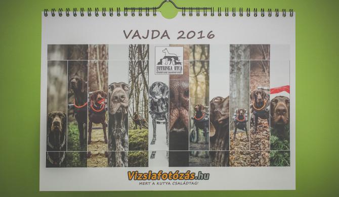 Vizslafotozas-Vajda_naptar_borito