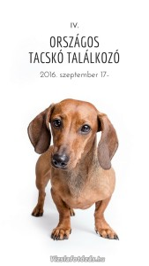 IV_Orszagos_Tacsko_Talalkozo_Mobil7_Vizslafotozas