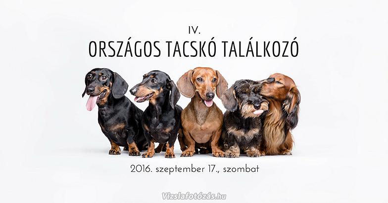 Orszagos_Tacsko_Talalkozo