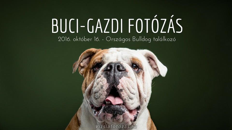 bulldog-talalkozo_tn