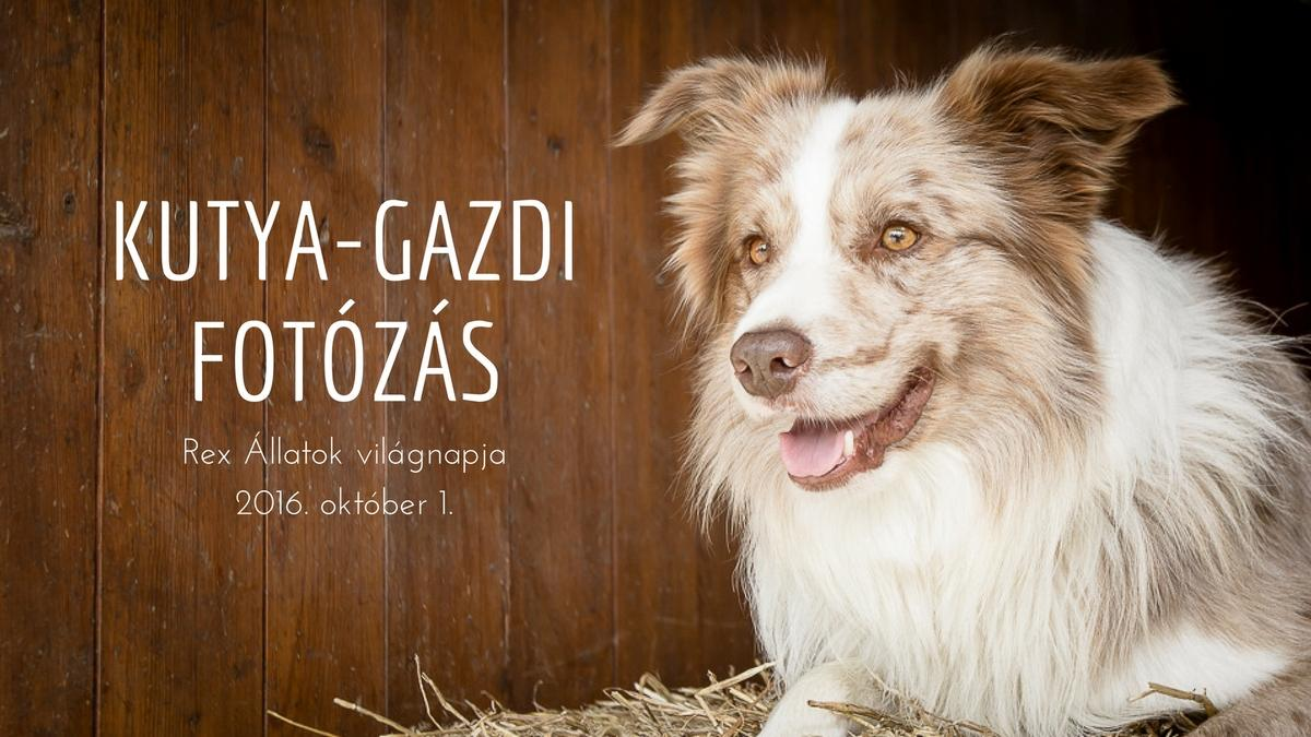 rex_kutya-gazdi_1200