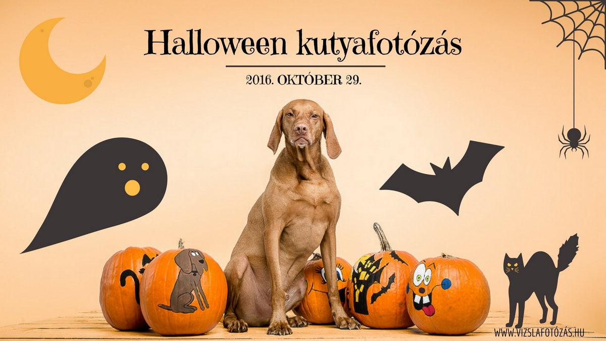 halloween_kutyafotozas_web