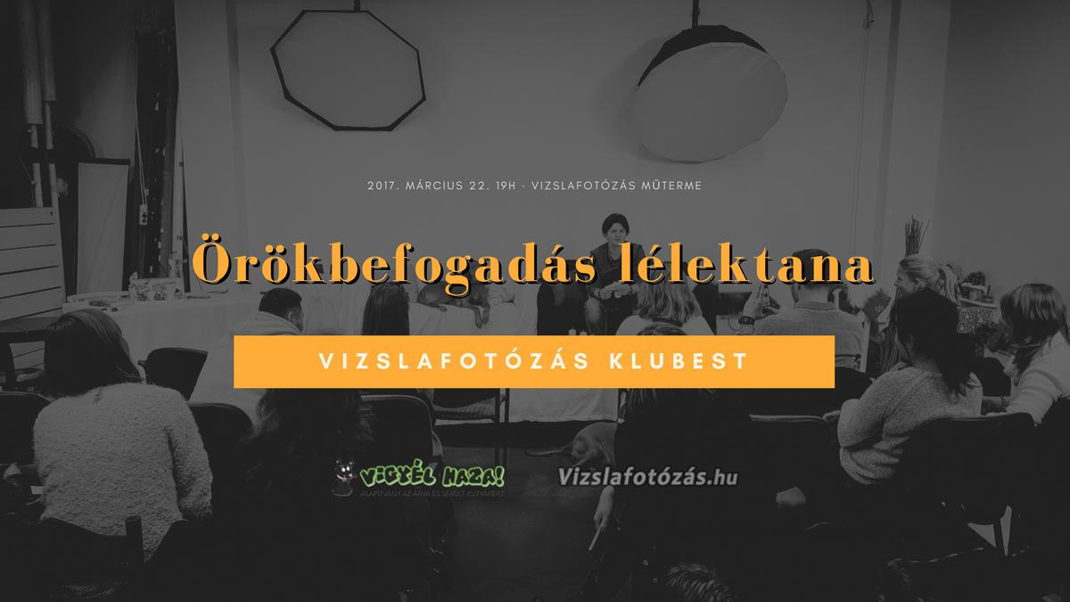 Vizslafotozas klubest - Orokbefogadas