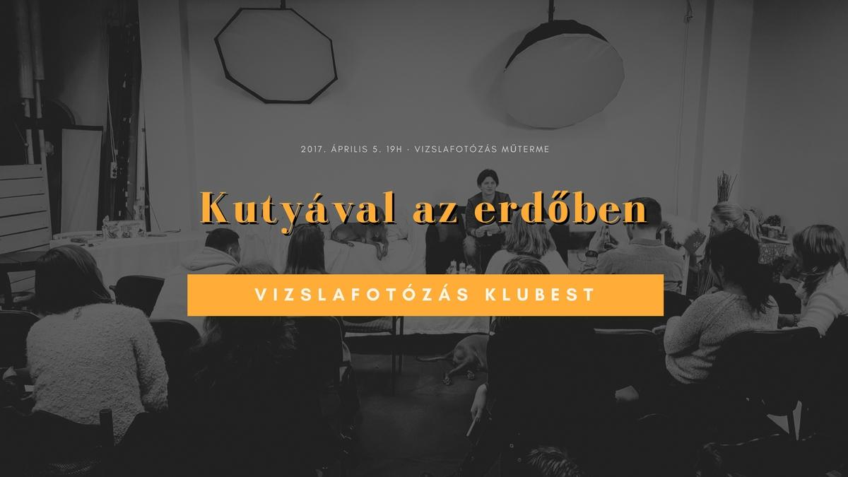Vizslafotozas_klubest-Kutyaval_az_erdoben