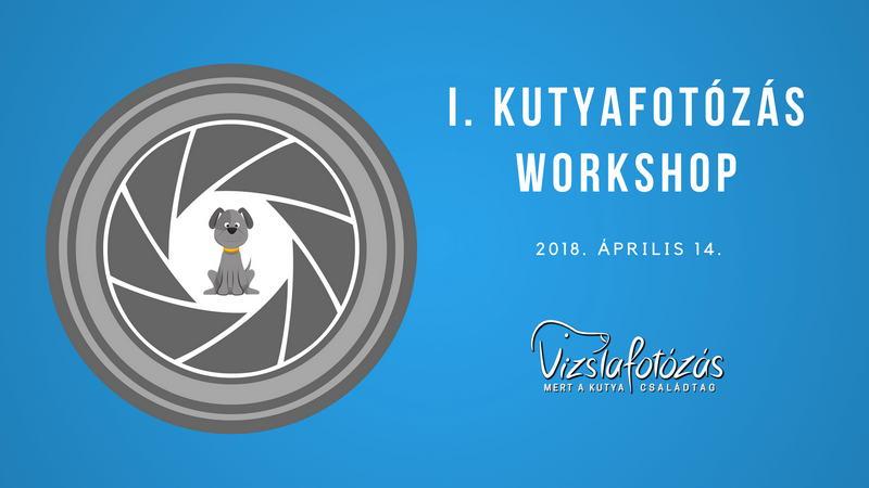 I. Kutyafotózás workshop